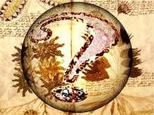 Manoscritto-Voynich-3